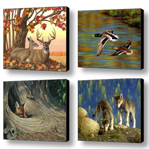 Crista Forest Wildlife Art